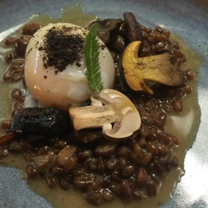 Fermented red wheat with sous-vide egg and button mushrooms